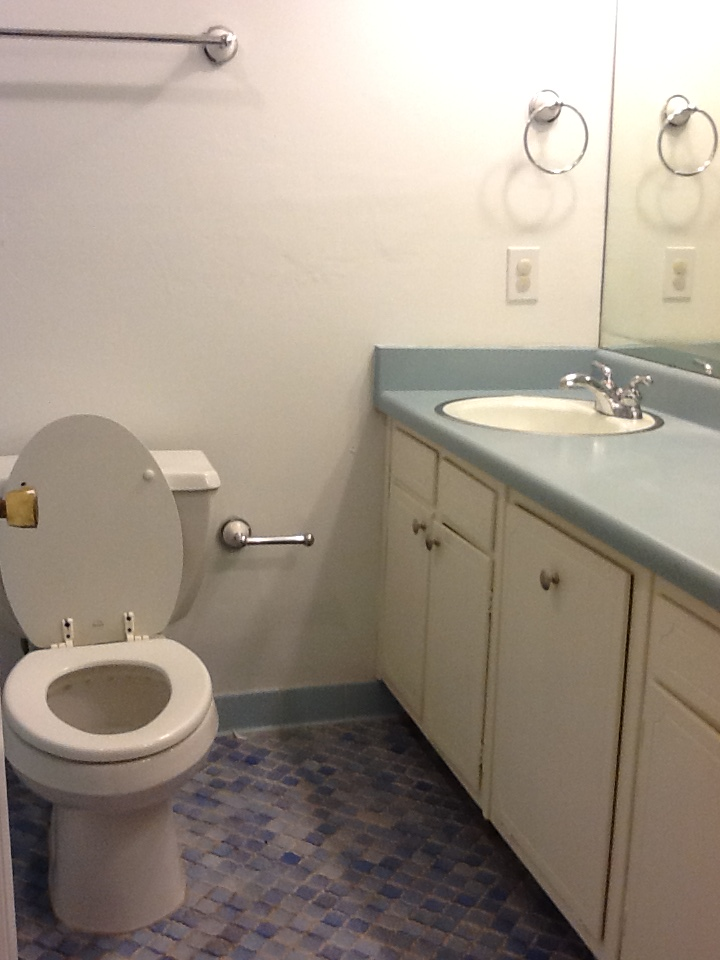 How we remodeled our bathroom to make it accessible. | Nobody's Normal