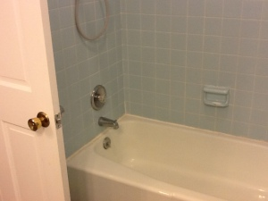 Just a common, 60-inch tub. Notice the in-swinging door.