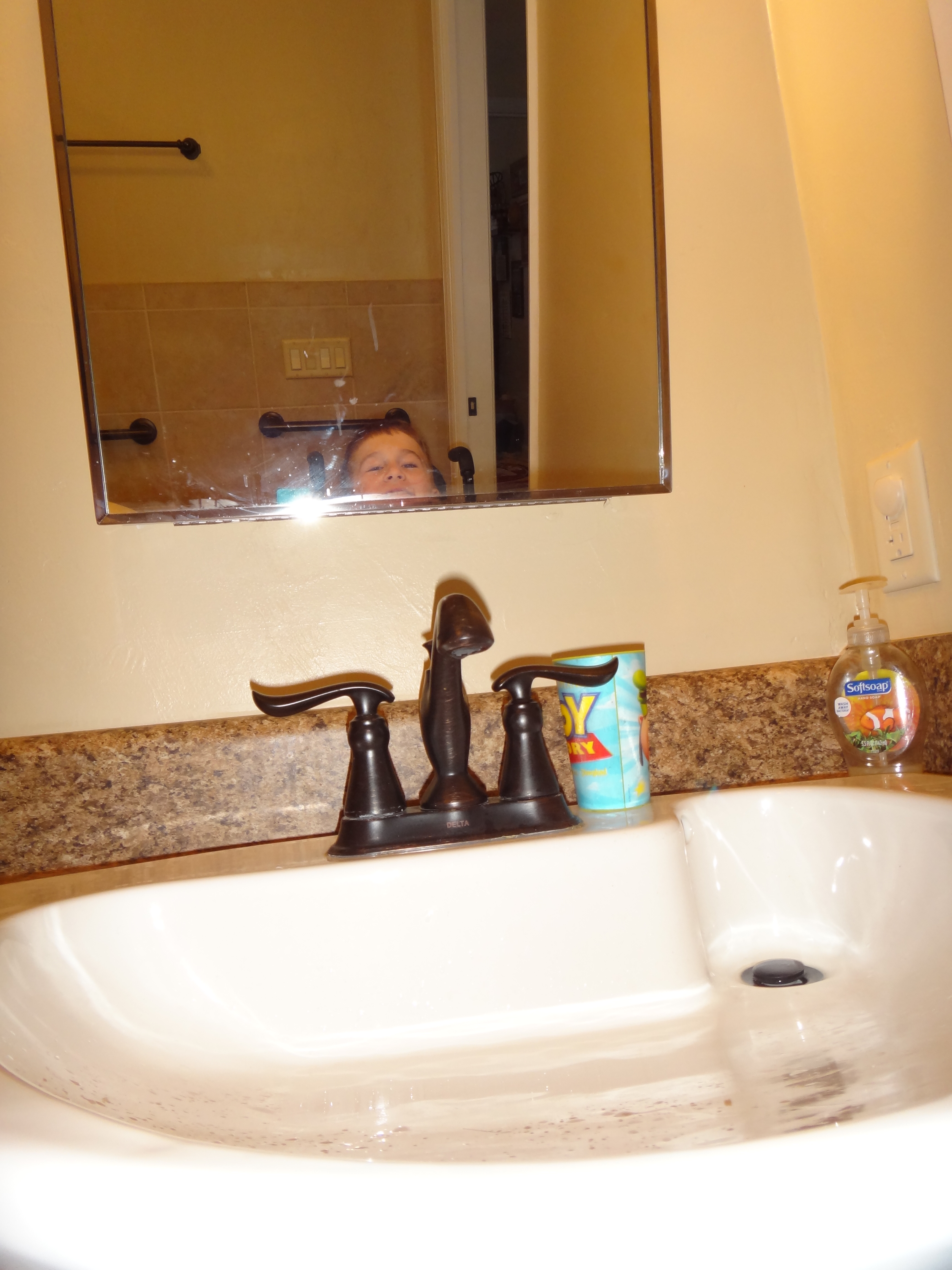 Handicap Bathroom Mirror Height how we remodeled our bathroom to make it accessible. | nobody's normal
